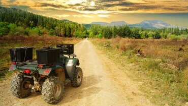 Image of Taking Your ATV to Ocala National Forest? 5 ATV Insurance Tips to Consider