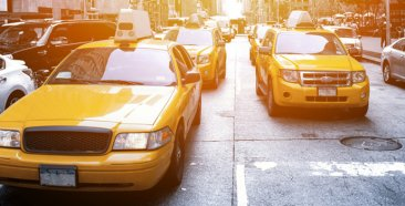 Image of a New York Car Insurance Requirements and Coverage