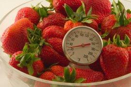 Frozen strawberries.